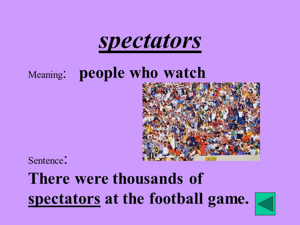 spectators Meaning: people who watch