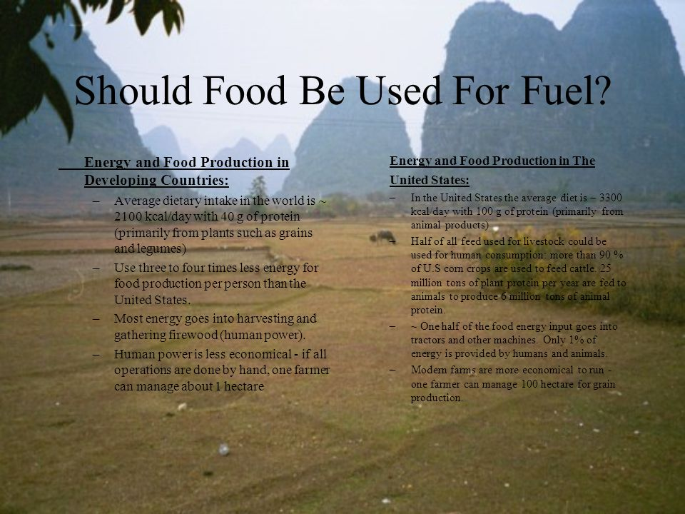 Should Food Be Used For Fuel