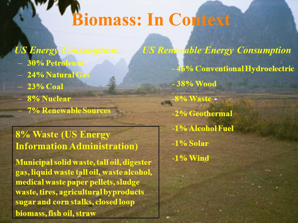 Biomass: In Context US Energy Consumption: