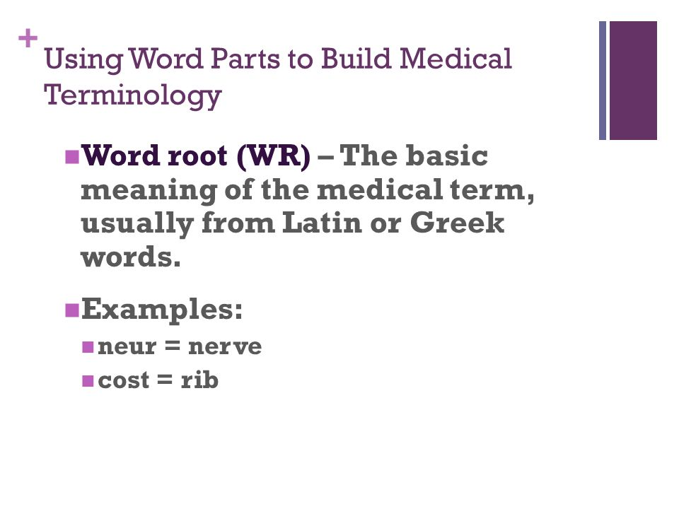 Medical Terminology Foundations Baccus  - ppt video online download
