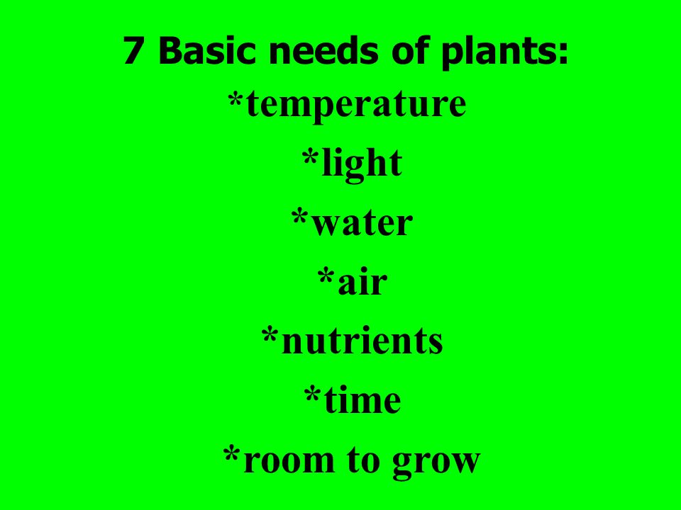 *light *water *air *nutrients *time *room to grow