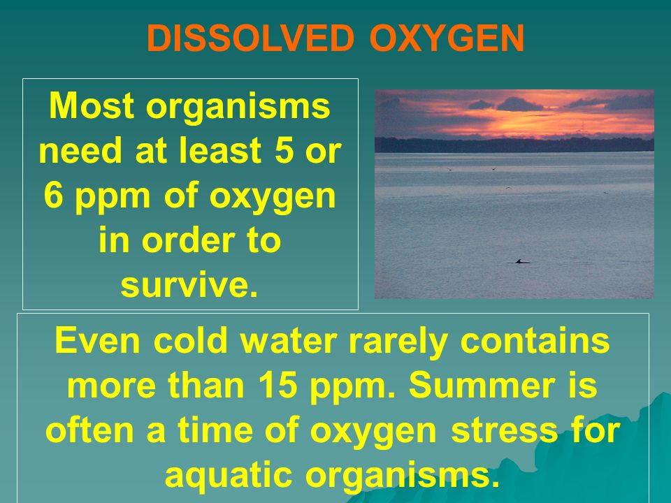 Most organisms need at least 5 or 6 ppm of oxygen in order to survive.