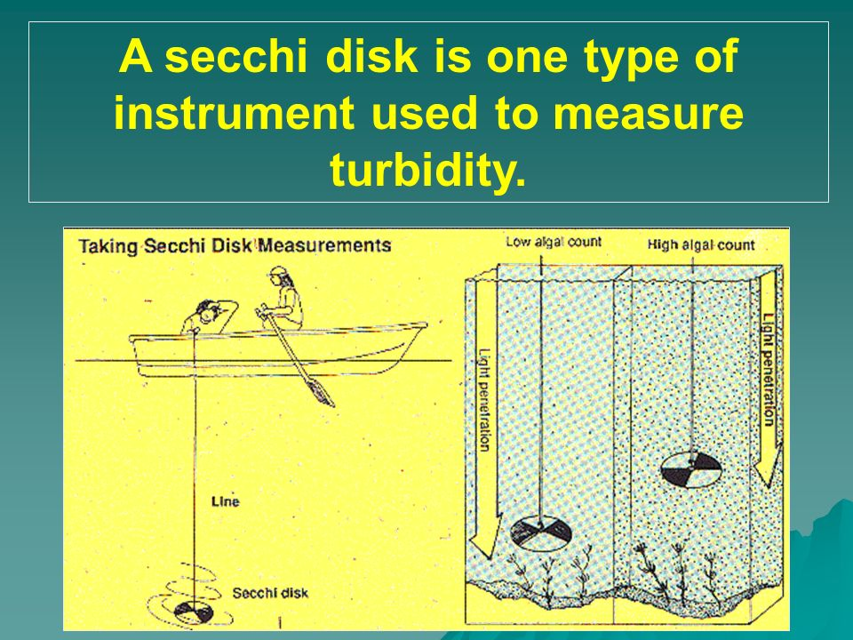 A secchi disk is one type of instrument used to measure turbidity.