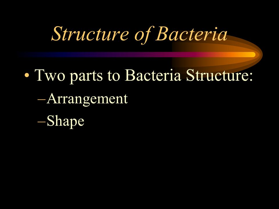 Structure of Bacteria Two parts to Bacteria Structure: Arrangement