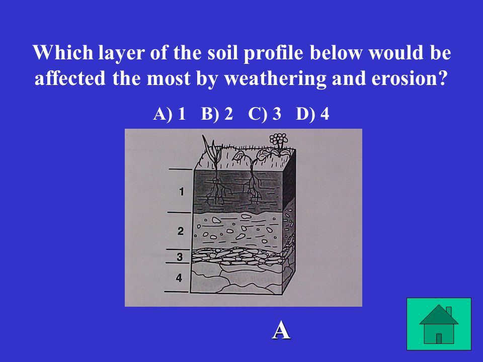Which layer of the soil profile below would be affected the most by weathering and erosion