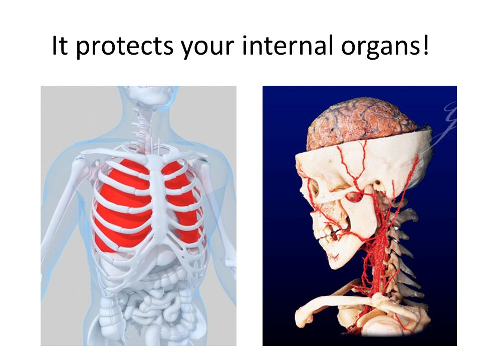 It protects your internal organs!