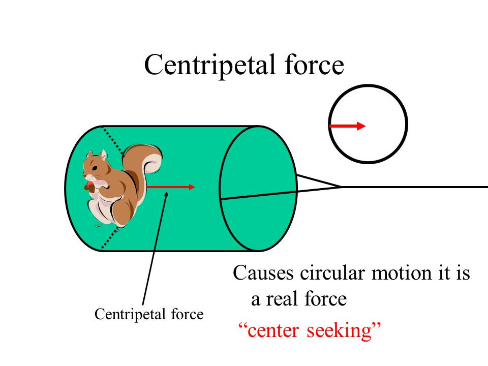 Centripetal force Causes circular motion it is a real force