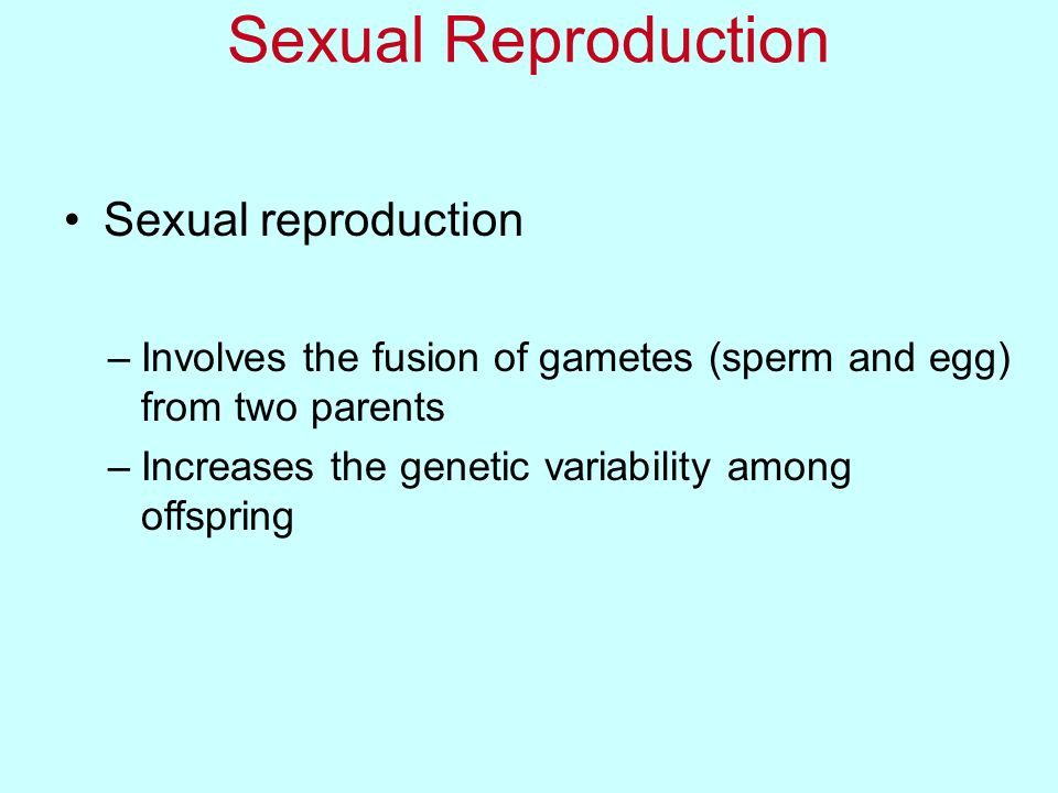 Sexual Reproduction Sexual reproduction