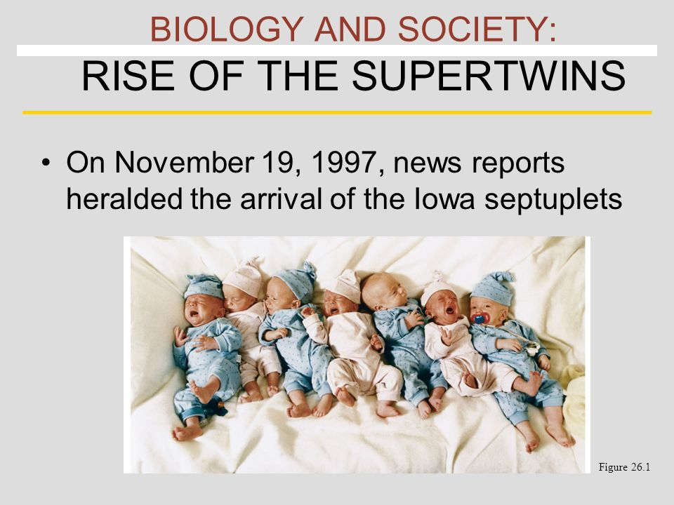 BIOLOGY AND SOCIETY: RISE OF THE SUPERTWINS