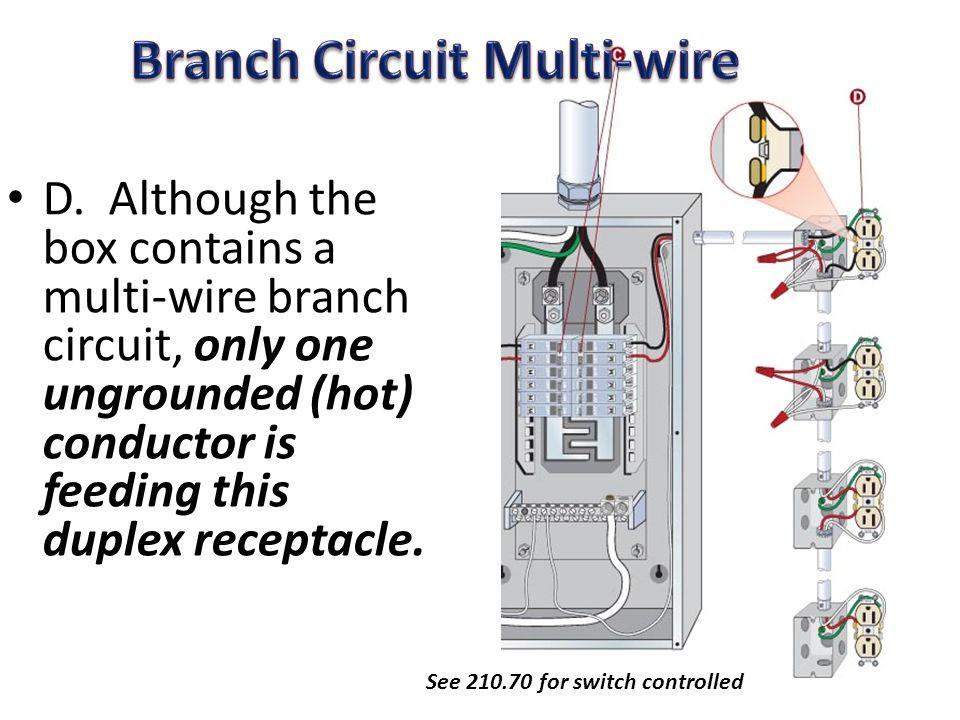 Branch Circuit Distribution Box - Wiring Diagram For Light Switch •