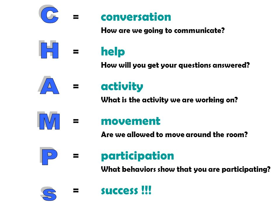 CHAMPs = conversation = help = activity = movement = participation