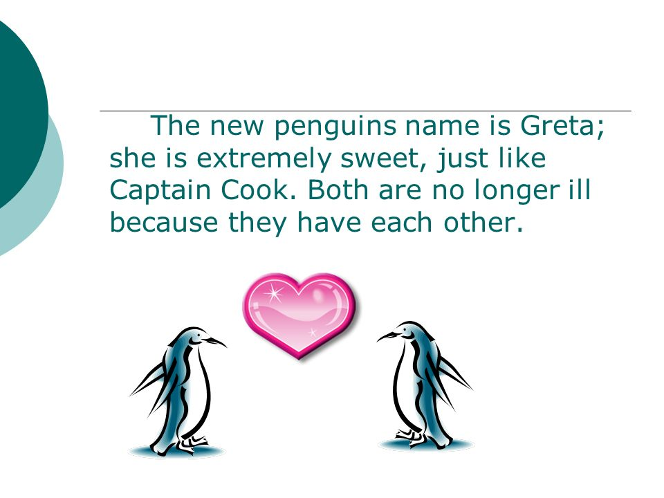 The new penguins name is Greta; she is extremely sweet, just like Captain Cook.