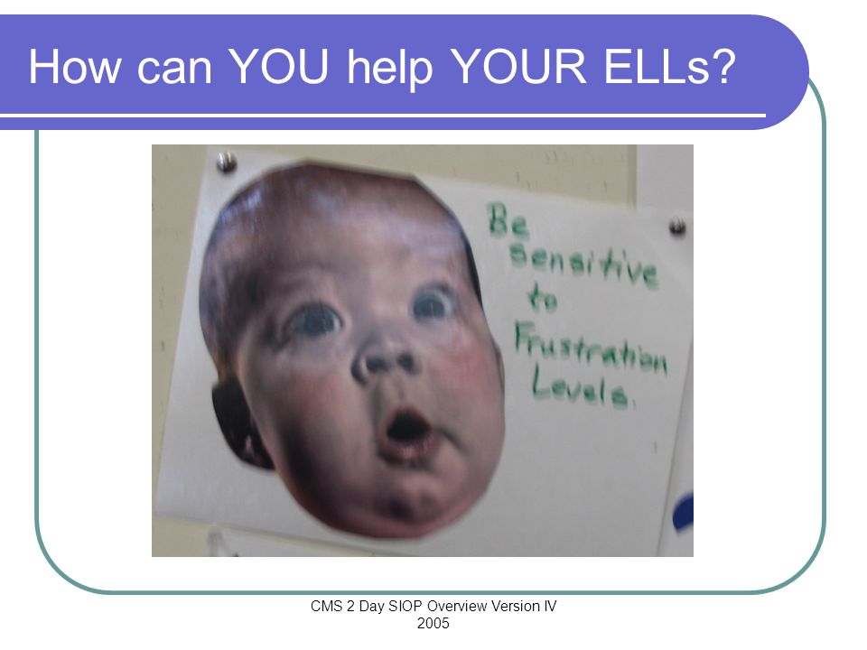 How can YOU help YOUR ELLs