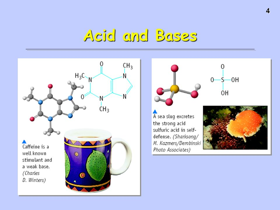 elemtary overview of acids and bases For older kids, predict the outcome of an acid and a base, two acids, or two bases want to learn more about chemistry try out bright ideas press christian kids explore chemistry , which includes an explanation of basic facts about chemistry, and adds in simple science experiments that illustrate the science behind each topic.