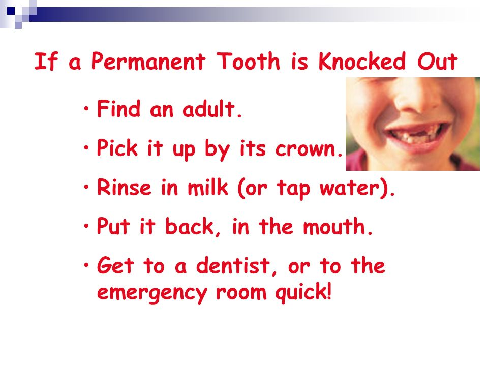 If a Permanent Tooth is Knocked Out