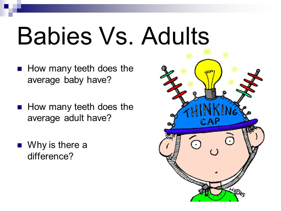 Babies Vs. Adults How many teeth does the average baby have