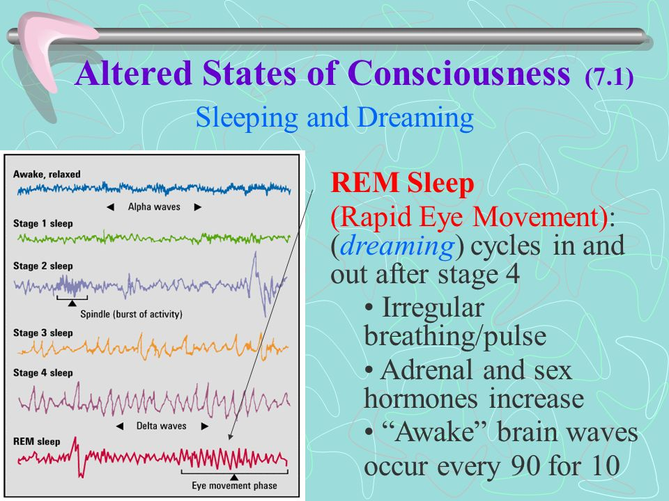 Altered States of Consciousness - ppt video online download