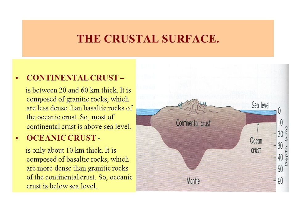 THE CRUSTAL SURFACE. CONTINENTAL CRUST –