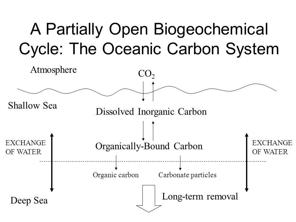 A Partially Open Biogeochemical Cycle: The Oceanic Carbon System