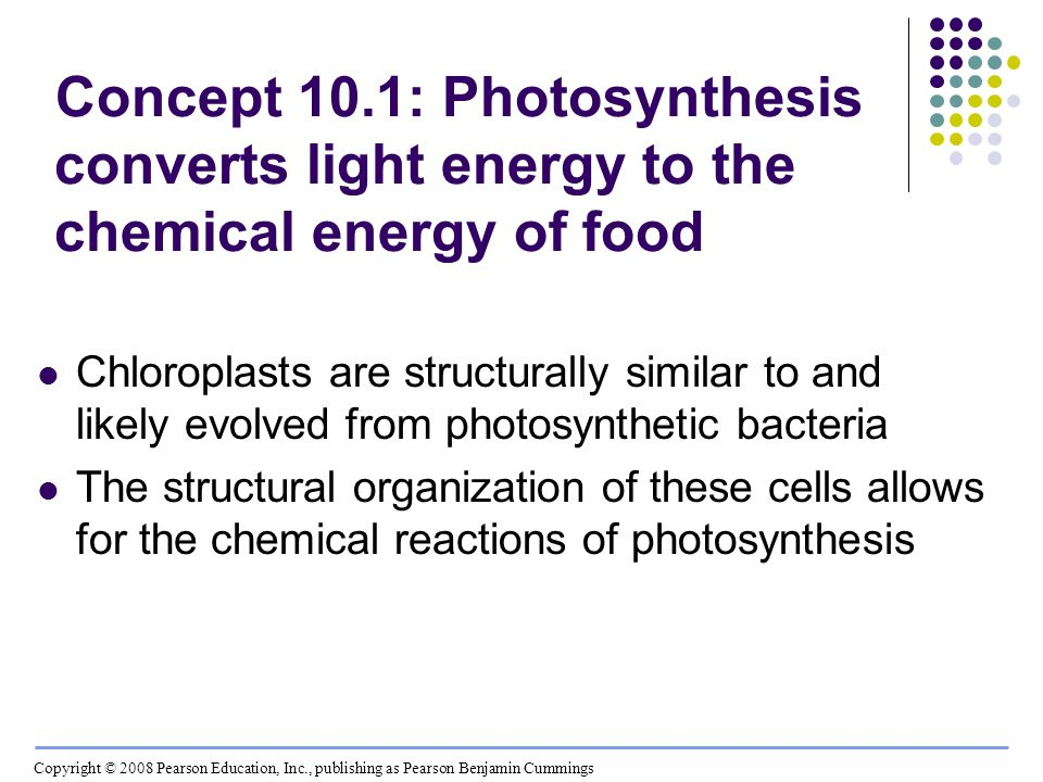 Concept 10.1: Photosynthesis converts light energy to the chemical energy of food