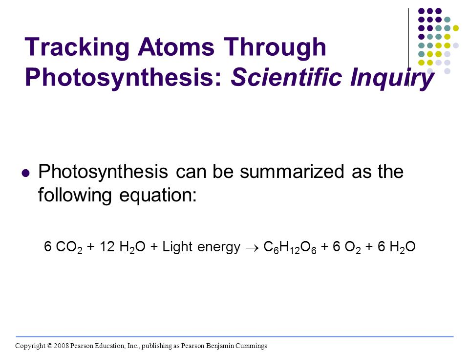 Tracking Atoms Through Photosynthesis: Scientific Inquiry