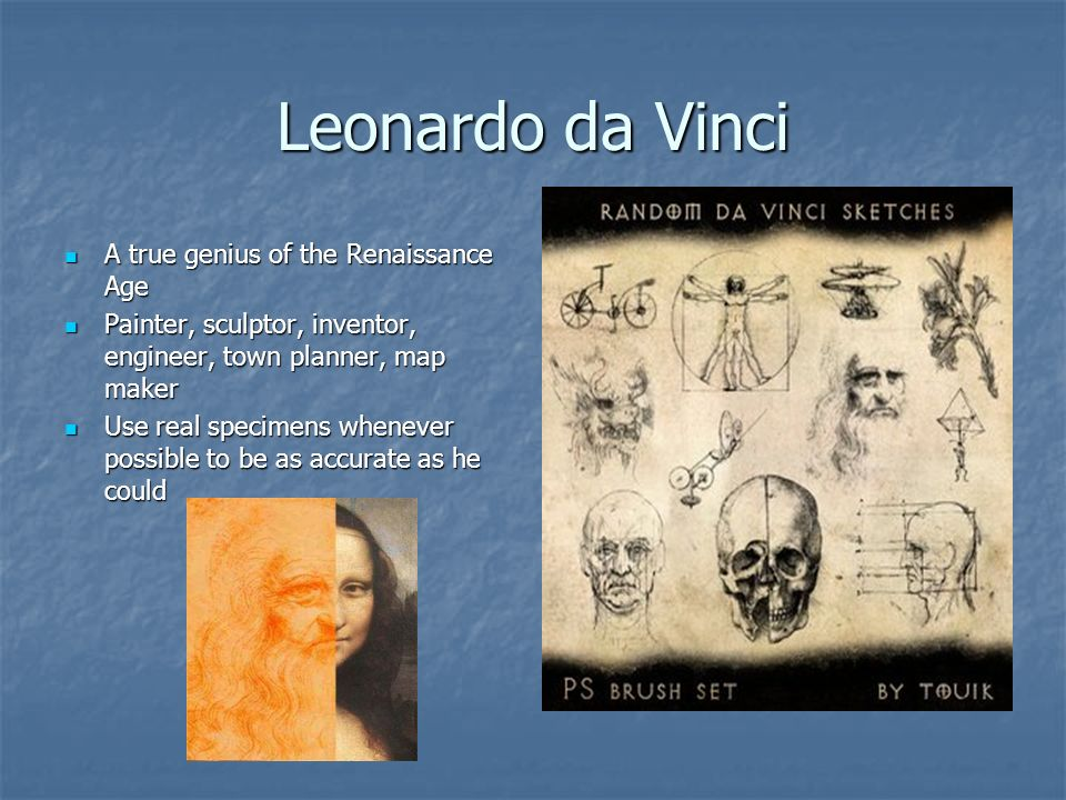 Leonardo da Vinci A true genius of the Renaissance Age