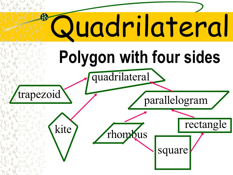 Quadrilateral Polygon with four sides quadrilateral trapezoid