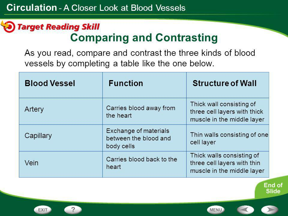 Table of Contents The Body's Transport System - ppt video ...