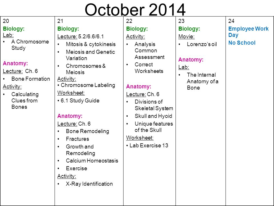 August First Day Of School Biology Syllabus Anatomy Ppt Download