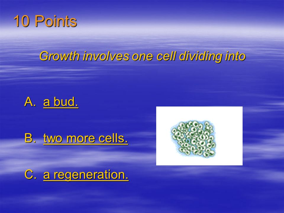 Growth involves one cell dividing into