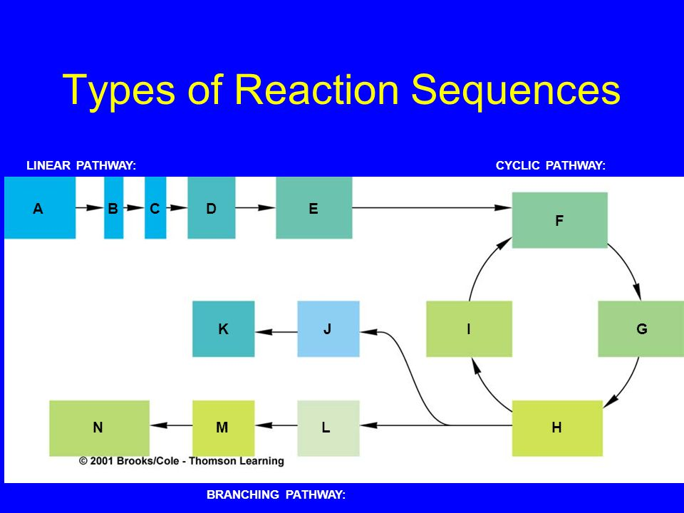Types of Reaction Sequences