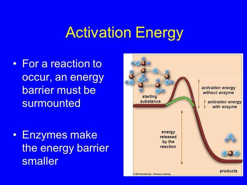 Activation Energy For a reaction to occur, an energy barrier must be surmounted. Enzymes make the energy barrier smaller.