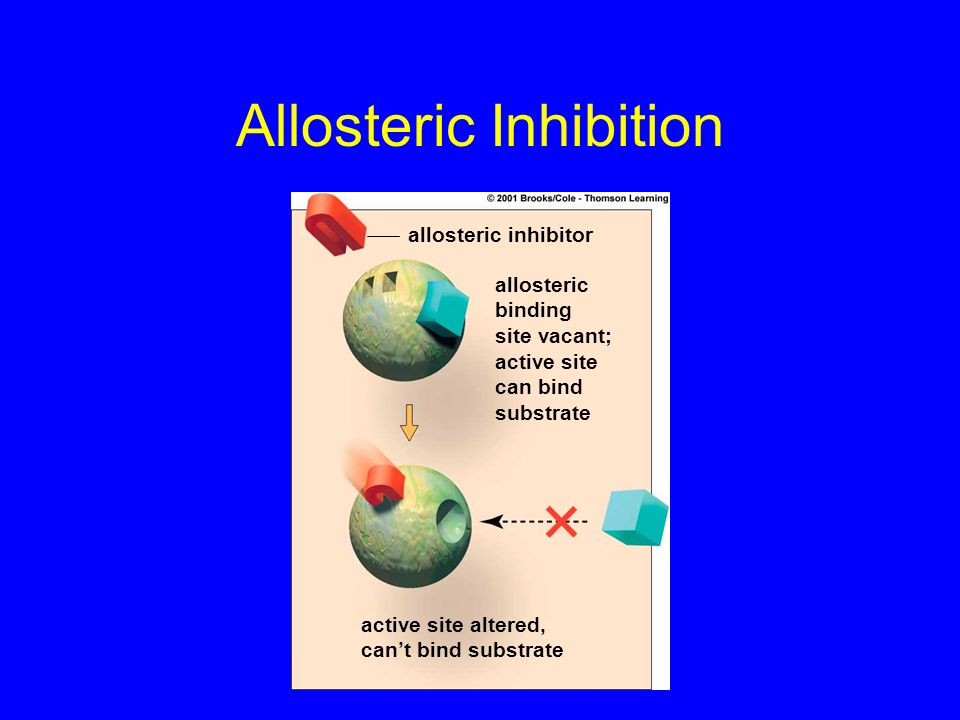 Allosteric Inhibition