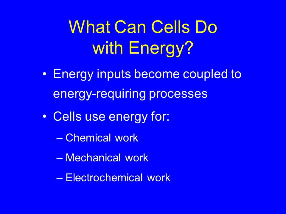 What Can Cells Do with Energy