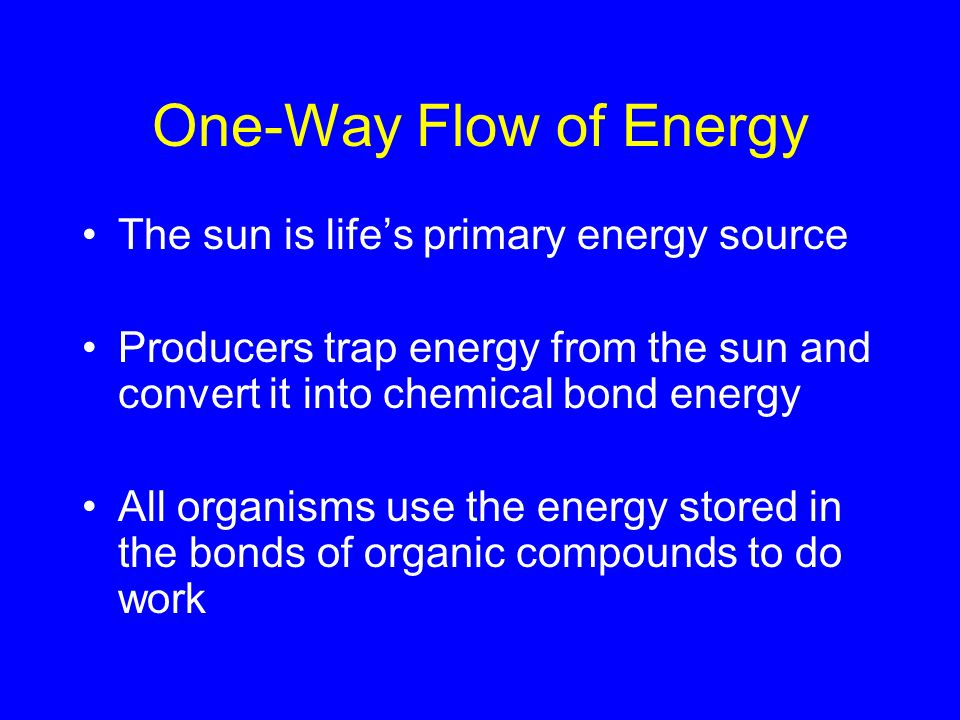 One-Way Flow of Energy The sun is life's primary energy source