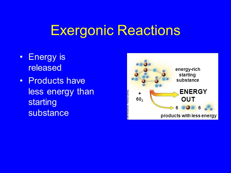 Exergonic Reactions Energy is released
