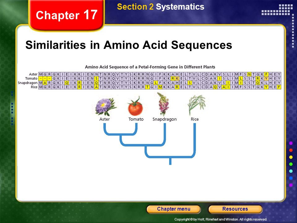 Similarities in Amino Acid Sequences