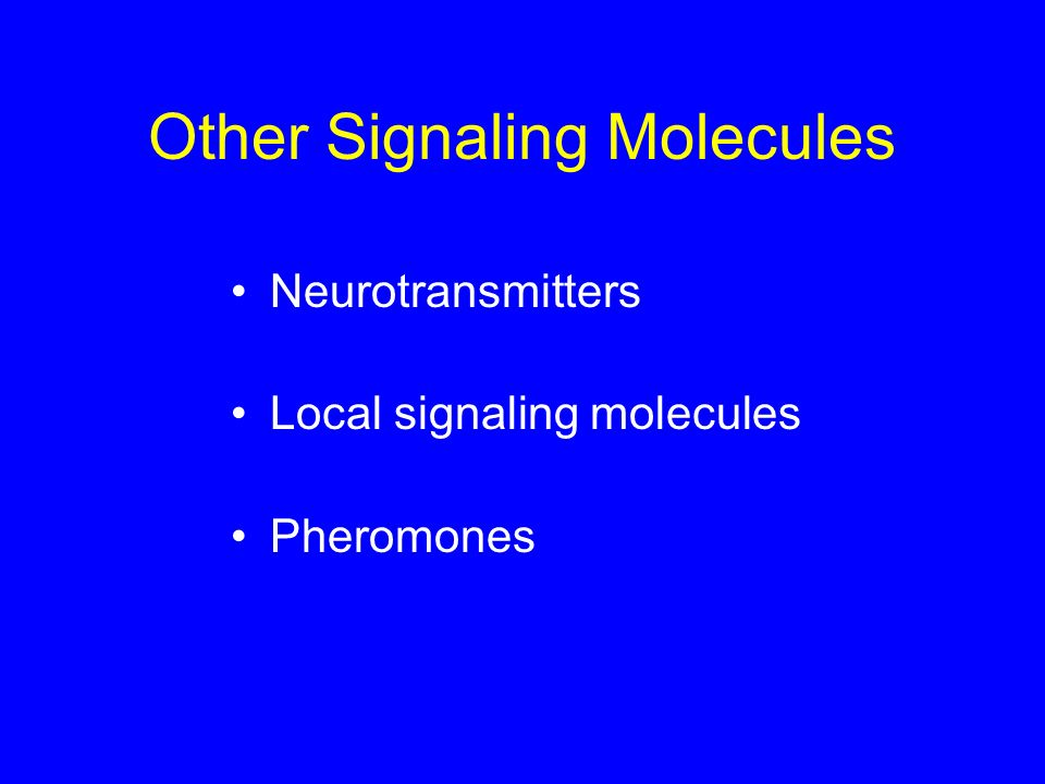 Other Signaling Molecules