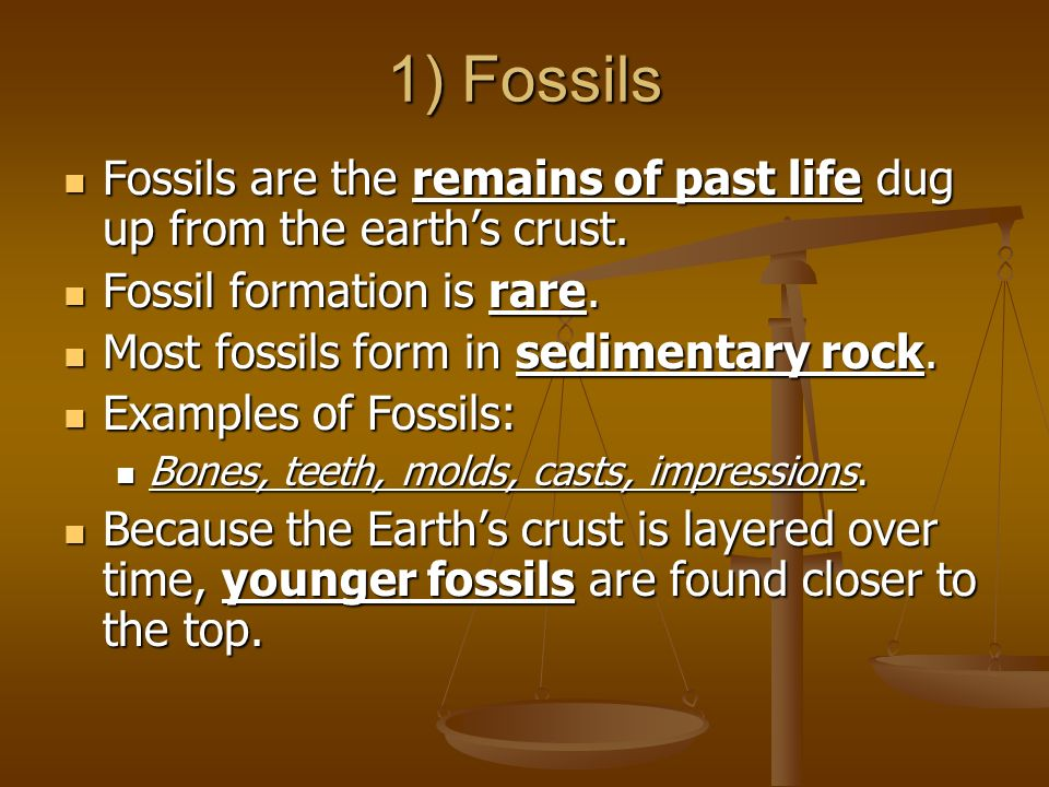 1) Fossils Fossils are the remains of past life dug up from the earth's crust. Fossil formation is rare.