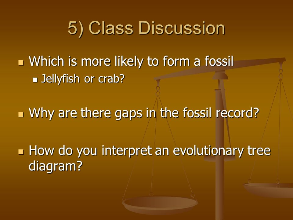 5) Class Discussion Which is more likely to form a fossil