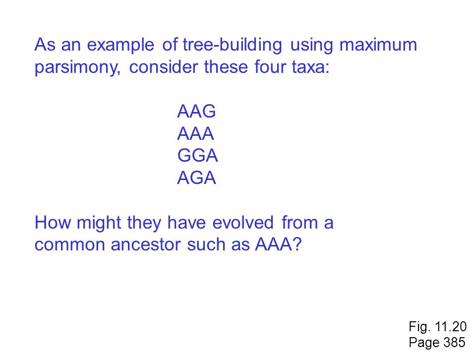 As an example of tree-building using maximum