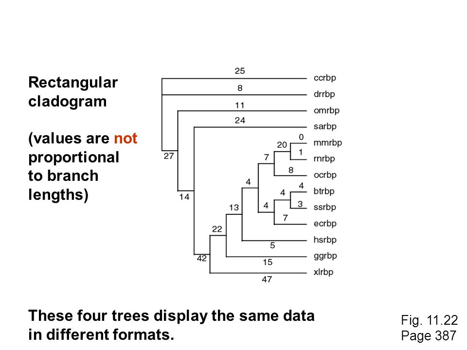 These four trees display the same data in different formats.