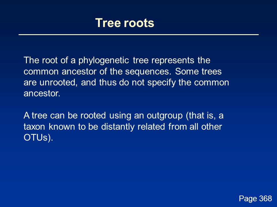 Tree roots The root of a phylogenetic tree represents the