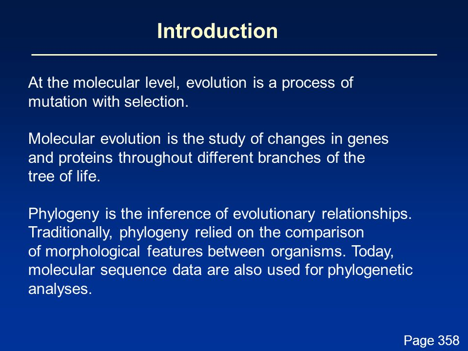 Introduction At the molecular level, evolution is a process of