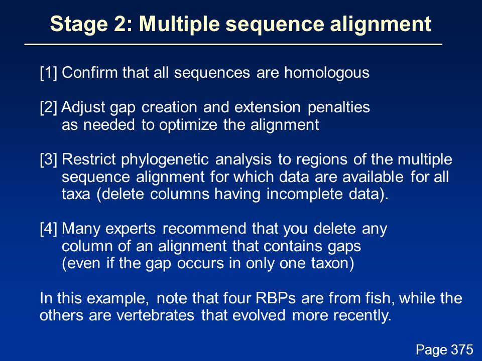 Stage 2: Multiple sequence alignment