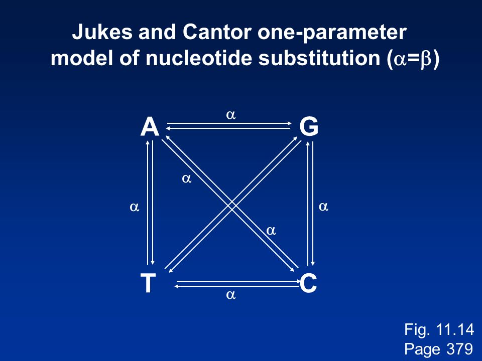 Jukes and Cantor one-parameter model of nucleotide substitution (a=b)