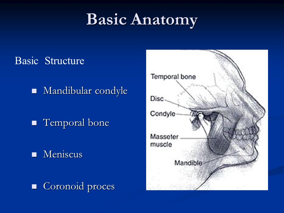 TMJ and Temporomandibular Joint Disorder - ppt video online download