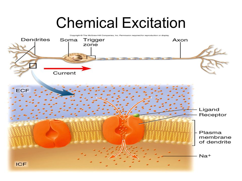 Chemical Excitation