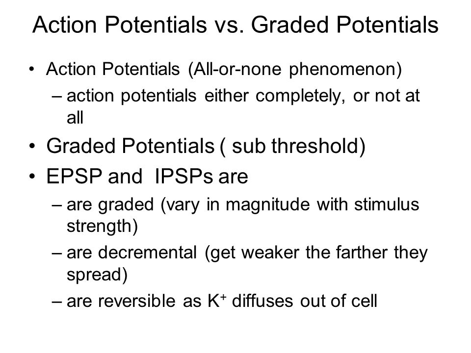 Action Potentials vs. Graded Potentials