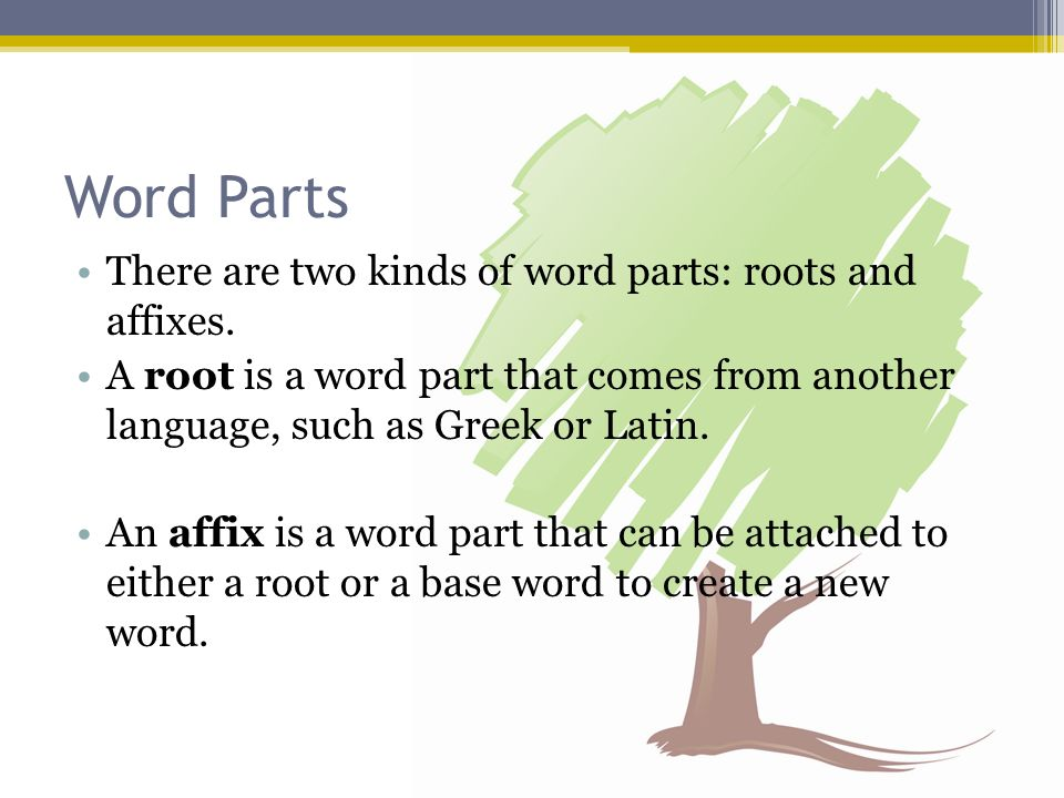 Word Parts There are two kinds of word parts: roots and affixes.